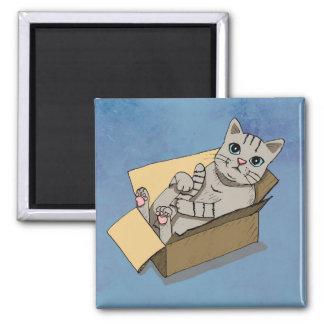 Aimant Chat dans une boîte en carton
