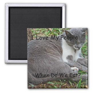 Aimant Chat gris en parc