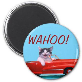 Aimant Chaton dans un convertible rouge