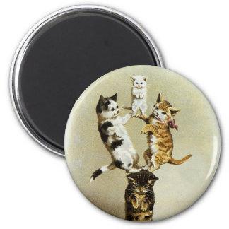 Aimant Chatons victoriens vintages mignons de chats
