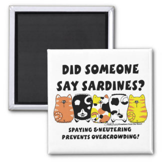 Aimant Chats de sardine