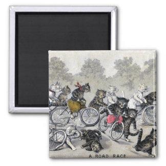 Aimant Chats d'équitation de bicyclette