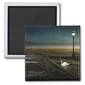 Aimant Chemin de fer 2013