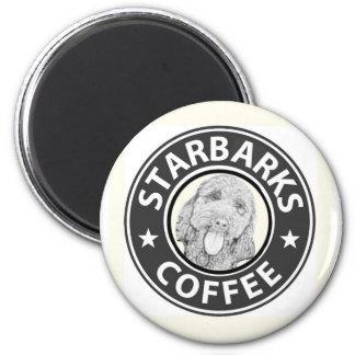 Aimant chien Starbucks