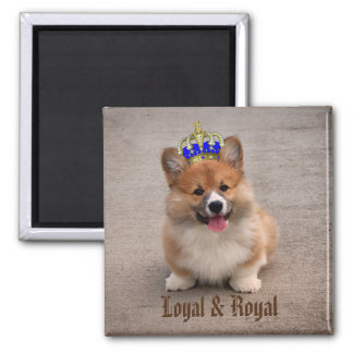 Aimant Chiot loyal et royal de corgi