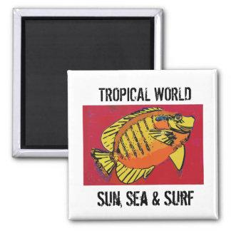 Aimant Club tropical de surf