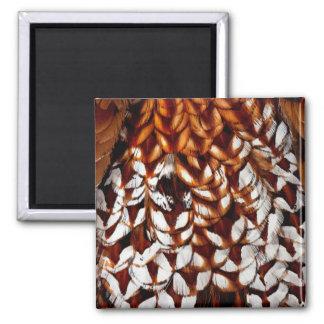Aimant Conception de cuivre de plume de faisan