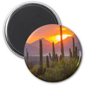 Aimant Coucher du soleil de cactus de désert, Arizona
