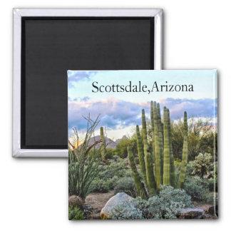 Aimant Coucher du soleil de Succulent de Scottsdale