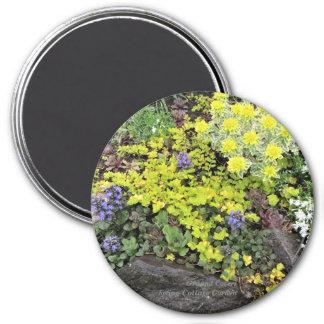 Aimant Couvertures végétales de jardin de cottage de