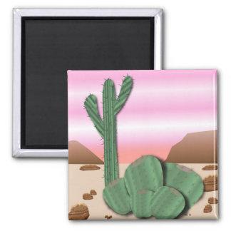 Aimant de cactus de désert