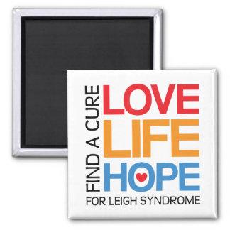 Aimant de conscience de syndrome de Leigh -