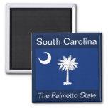 Aimant de drapeau de la Caroline du Sud