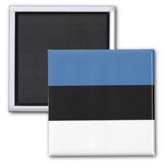 Aimant de drapeau de l'Estonie