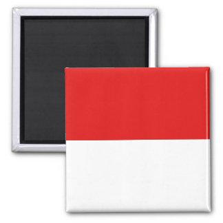 Aimant de drapeau de l'Indonésie