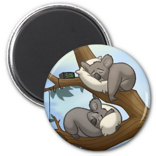 Aimant de koala de sommeil