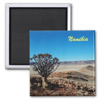 Aimant de la Namibie