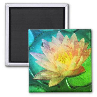 Aimant de Lotus