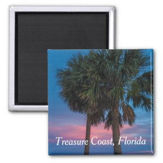 Aimant de palmier de la Floride de côte de trésor