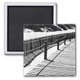 Aimant de photo de promenade et de dunes