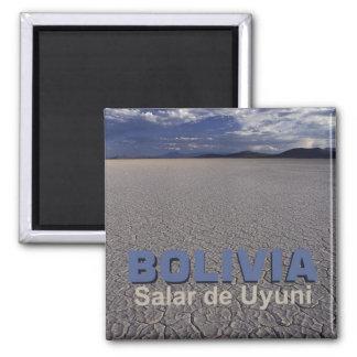 Aimant de souvenir de voyage de Salar de Uyuni Bol