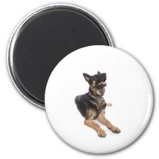 Aimant dog - german shepherd