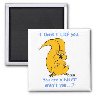 Aimant drôle d'amitié pour des amants d'écureuil