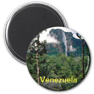 Aimant du Venezuela