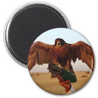 Aimant Eagle