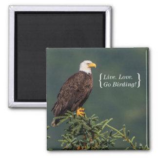 Aimant Eagle chauve majestueux
