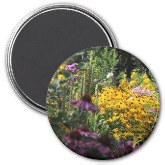 Aimant Echinacée observée par noir de Mullein Susans