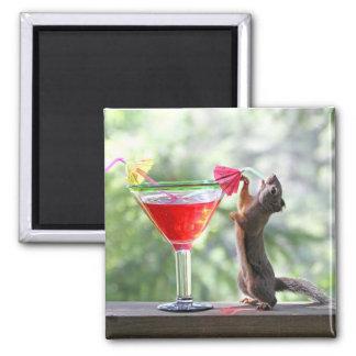 Aimant Écureuil buvant un cocktail à l'heure heureuse
