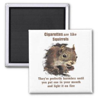 Aimant Écureuil de motivation de tabagisme stoppé drôle