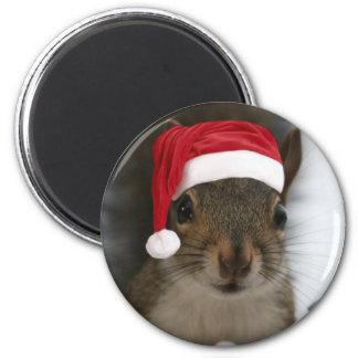Aimant Écureuil drôle utilisant le casquette de Père Noël