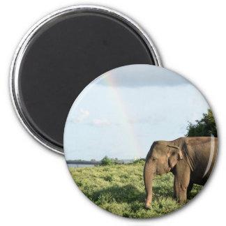Aimant Éléphant d'IMSri Lankan