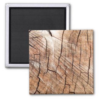 Aimant en bois de grain
