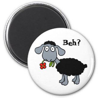 Aimant Fleur drôle mignonne de moutons noirs de bande