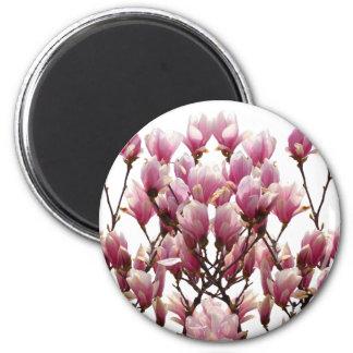Aimant Fleur rose de floraison de ressort de magnolias