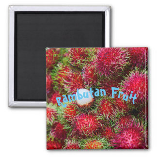 Aimant Fruit tropical de ramboutan