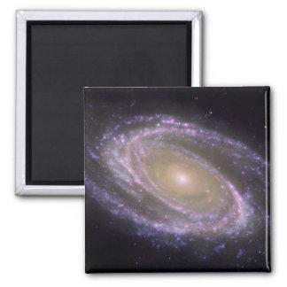 Aimant Galaxie en spirale 81 plus malpropres
