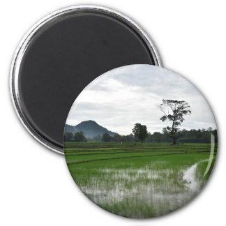 Aimant Gisements de riz du Sri Lanka