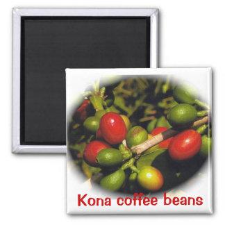 Aimant Grains de café de Kona