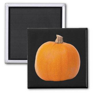 Aimant Grand citrouille orange de récolte d'automne