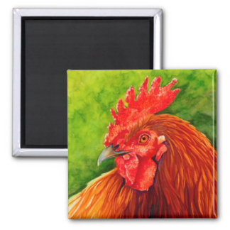 Aimant Grand rouge - coq Magneted R