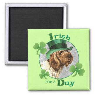Aimant Griffon du jour de St Patrick
