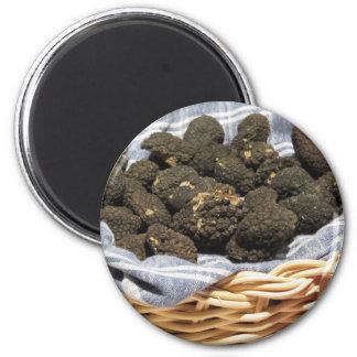 Aimant Groupe de truffes noires chères italiennes
