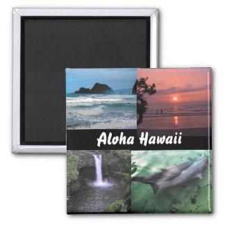 Aimant hawaïen de collection de paysage