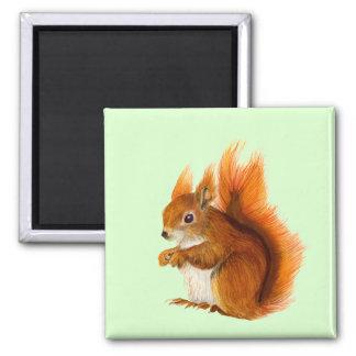 Aimant Illustration de faune de peinture d'aquarelle