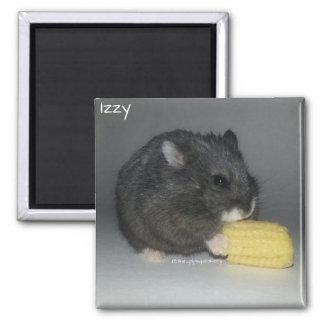 Aimant Izzy mange d'un maïs de bébé