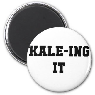 Aimant Kaleing il